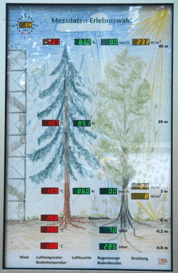 Schautafel im Erlebniswald Solling